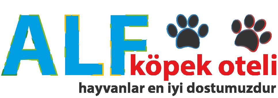 Ankara Köpek Oteli Ankara / Alf Köpek Oteli - 0 536 370 9 793